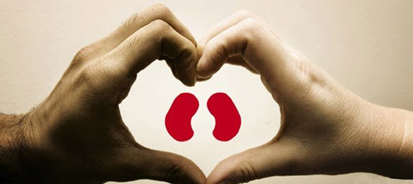 Kidney Donation In India