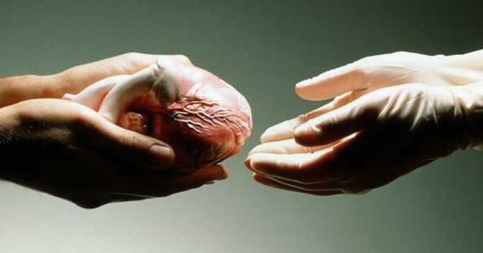 Heart Retrieved In Pune To Give Delhi Man New Lease Of Life