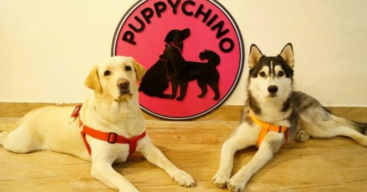 Dog Cafe mascots