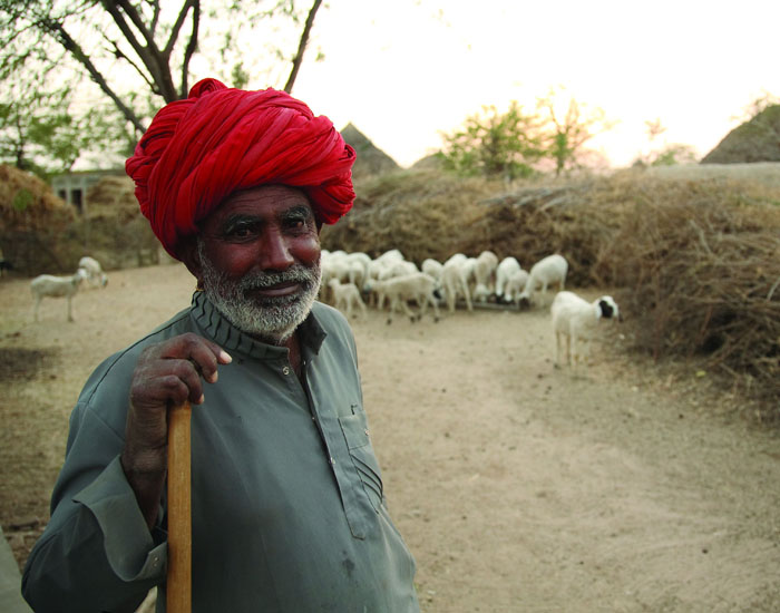While The Country Is Facing A Water Crisis There Is No Shortage Of Supply In Thar Desert!