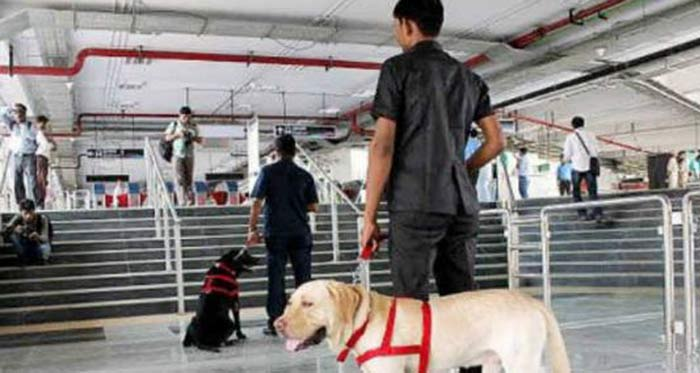 Delhi Metro Employee Stabbed, Looted Of Rs. 12 Lakh