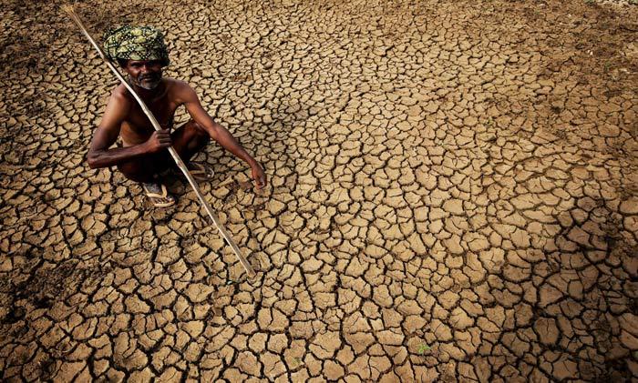 Heatewave Stricken Andhra Peadesh To Distribute Buttermilk