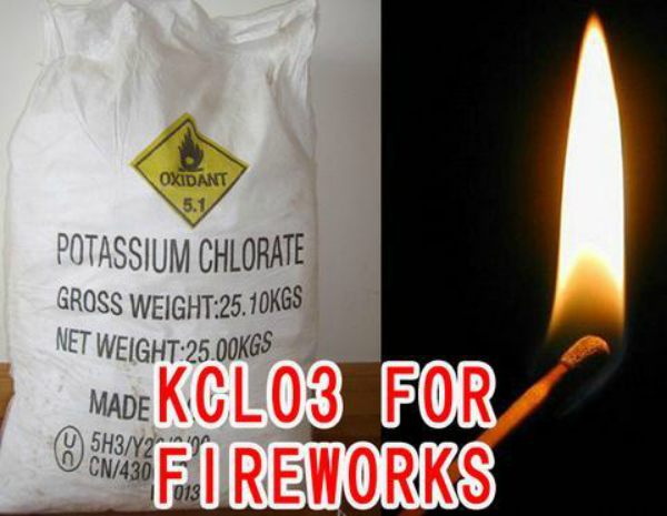 The Kollam Temple Tragedy Could Have  Avoided, If They Were Not Storing Banned Potassium Chlorate To Enhance Fireworks