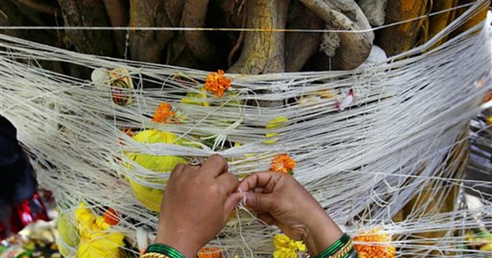 This Holy Tree In Ayodhya Revered By Hindus Is Nurtured By Muslims
