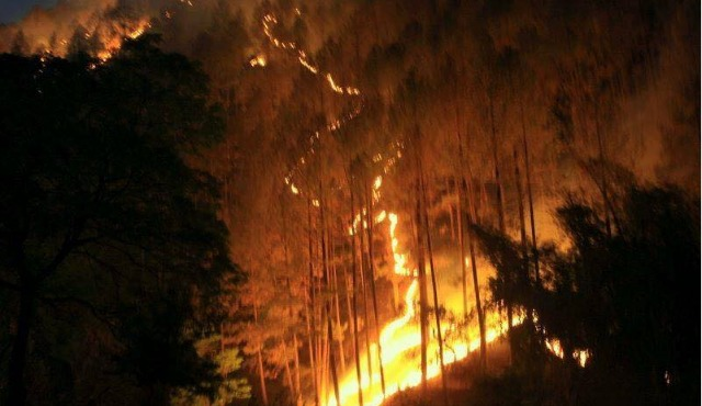 Uttrakhand Forest Fire