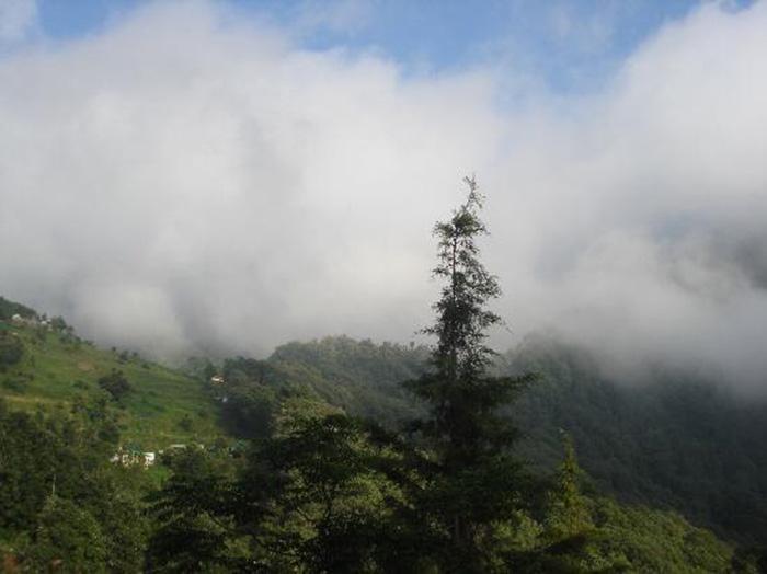 Pangot - Uttaranchal