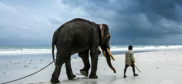 Rajan walking away