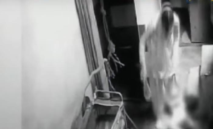Delhi Woman Caught On Camera