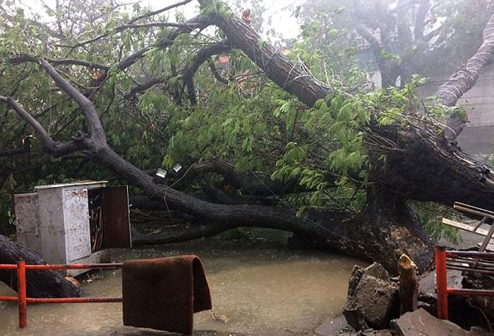 Cyclone Vadrah