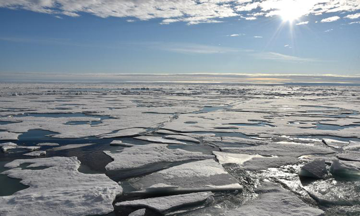 Polar sea ice the size of India