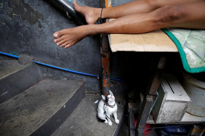 A cat is tied to the leg of a sleeping inmate inside Quezon City Jail