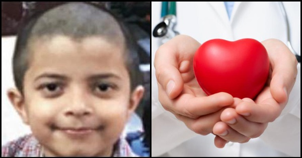 7-year-old donates organs