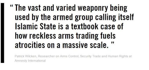 amnesty ISIS weapons