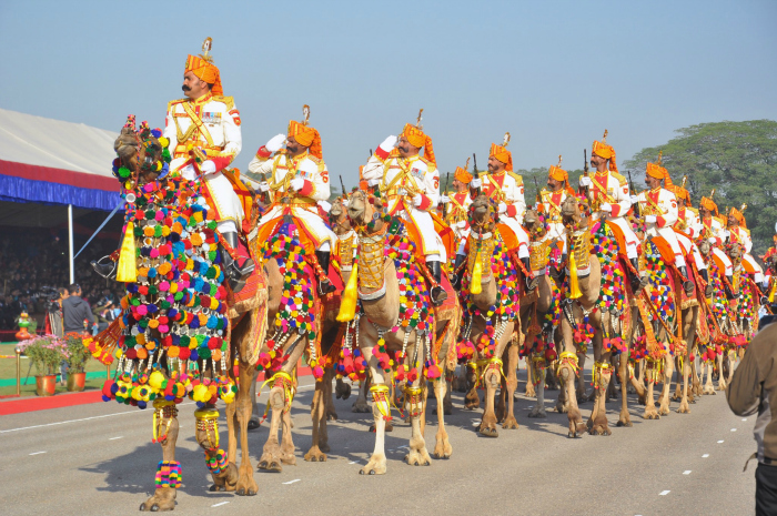 For The First Time in 66 Years, BSF Camel Contingent Will Not Be Part Of Republic Day Parade