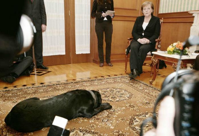 Koni & Angela Merkel