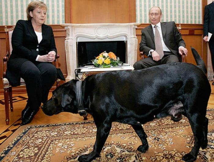 Vladimir Putin & Angela Merkel