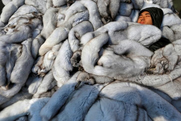 China Fur Trade