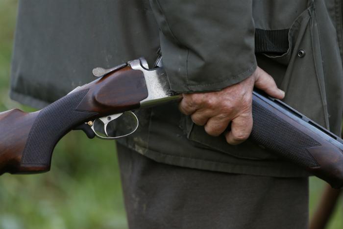 France guns
