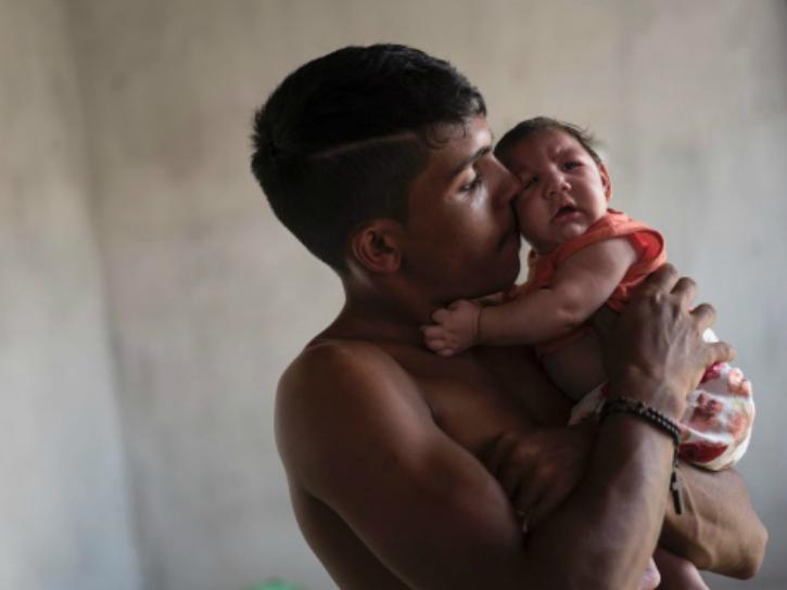 Zika in brazil
