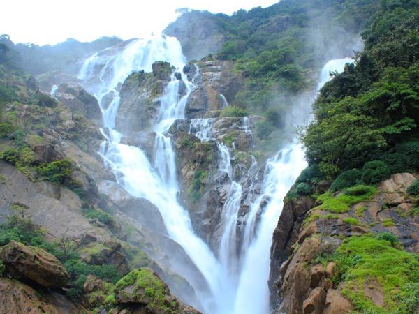 Dudhsagar_Falls_Goa