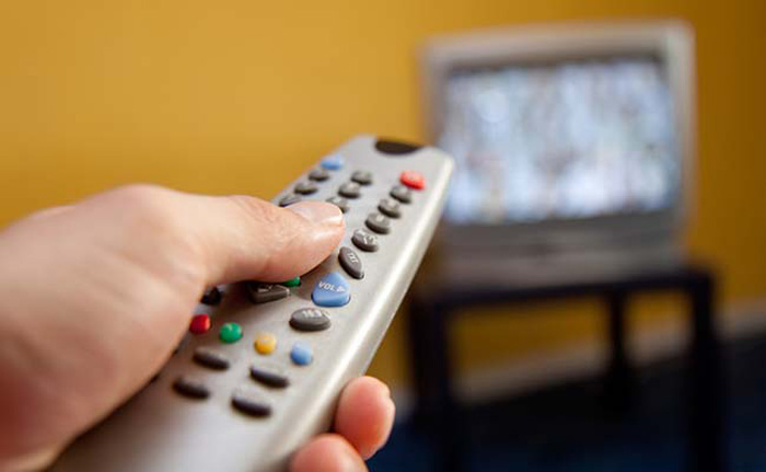 Dog Can Flip Through Channels on Television