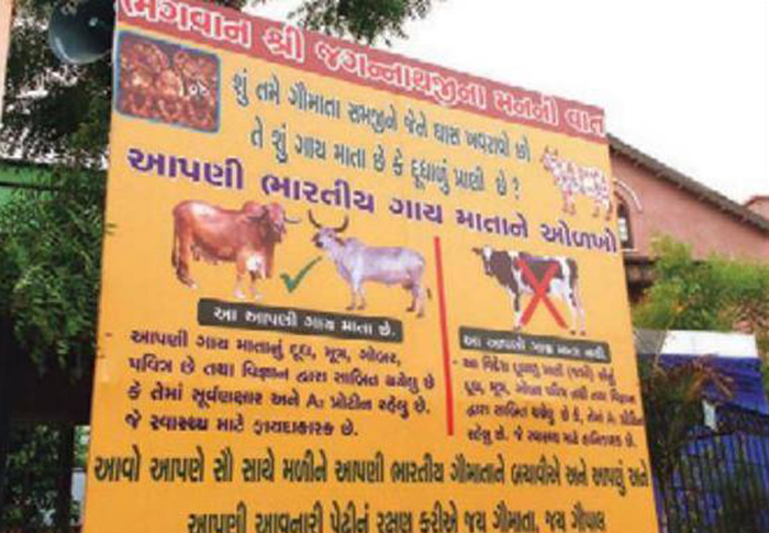 Cow Protection Group