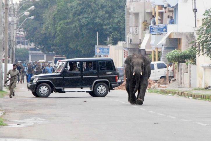 Mysore attack