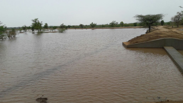 Villagers Dig Their Own Lake Out Of Barren Land To Collect Rainwater