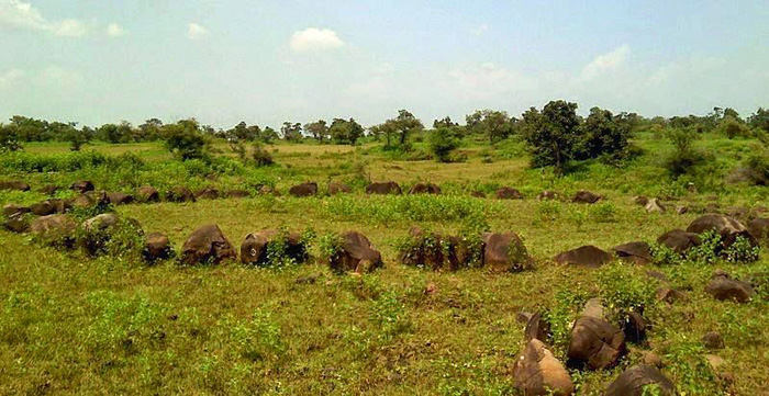 Just Beyond Katol Toll Booth, Perhaps India's Largest Megalithic Stone Circle Burial Site