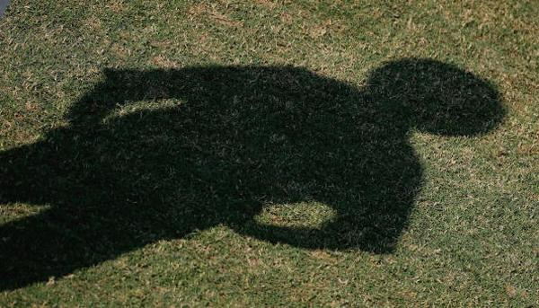 cricket shadow