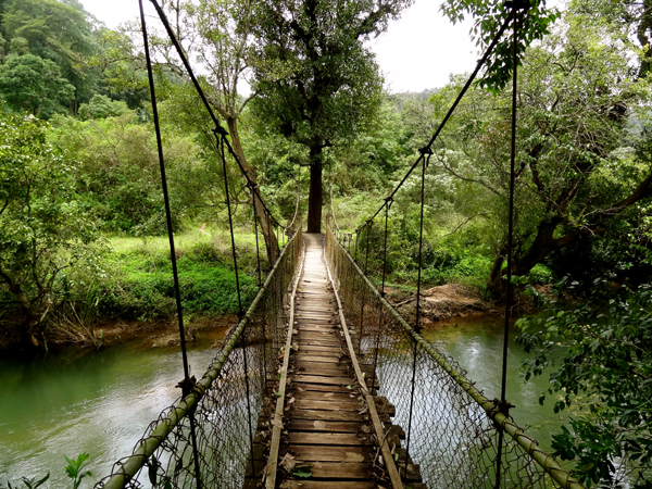 Coorg_Monsoon_Staycation