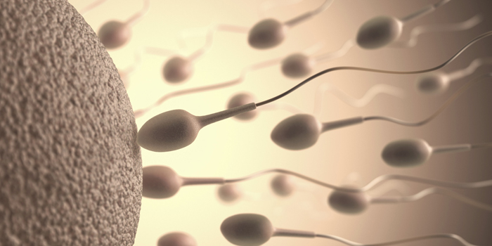 Call For Men In China To Donate Sperm For Country