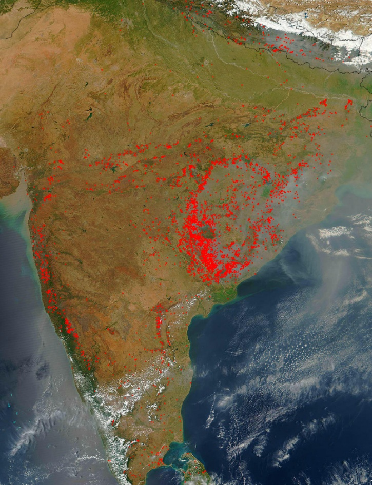 forest fires india nasa
