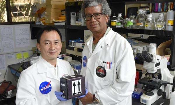 NASA Fungi Space Project