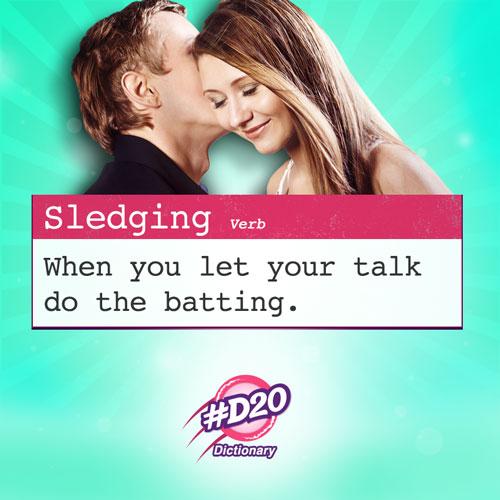 Sledging_D20_cricket