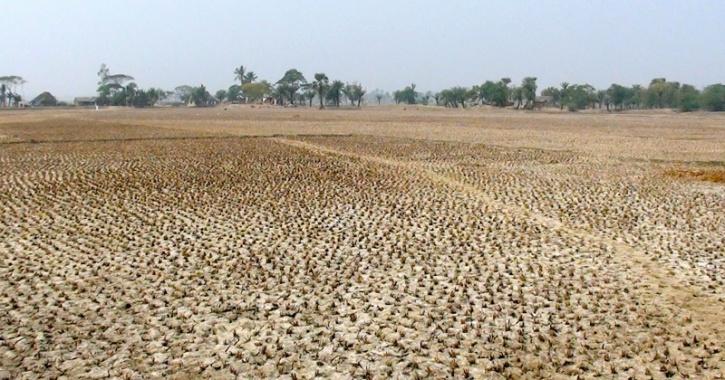 Dried farmland