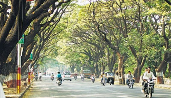 Indian Government Announcing Rs 1,000cr Green Fund To Plant Trees Along 10,000 KM Of Highways