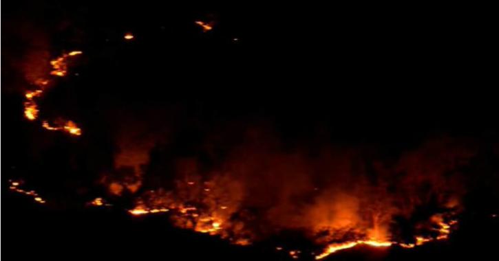Yeoor Forest fire