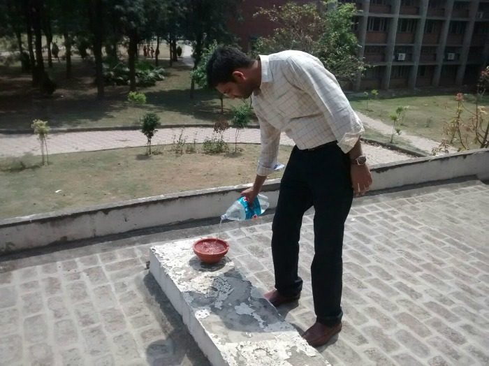 Water bowls placed for birds/animals at Punjab University