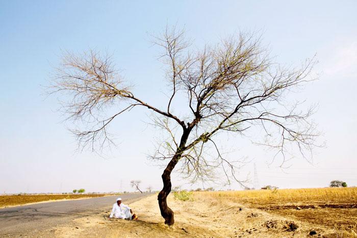 Farmer Suicides Cross 400 Mark In Marathwada in 2016