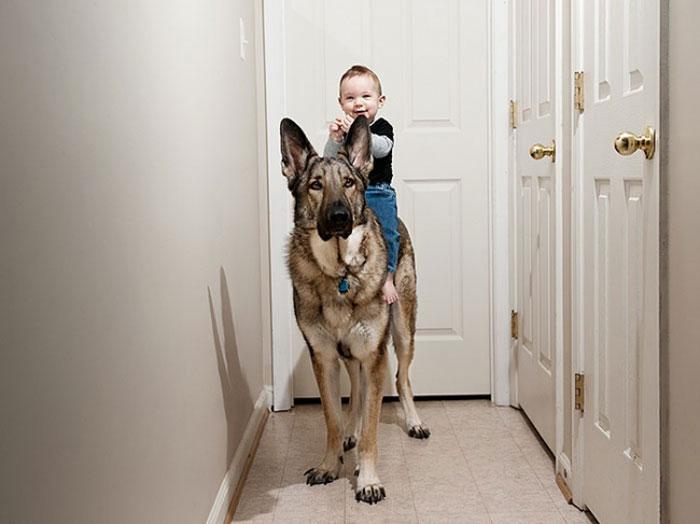 A Child's Best Friend