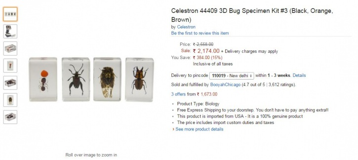 Wildlife Specimen