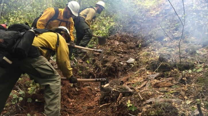 Digging a fire line