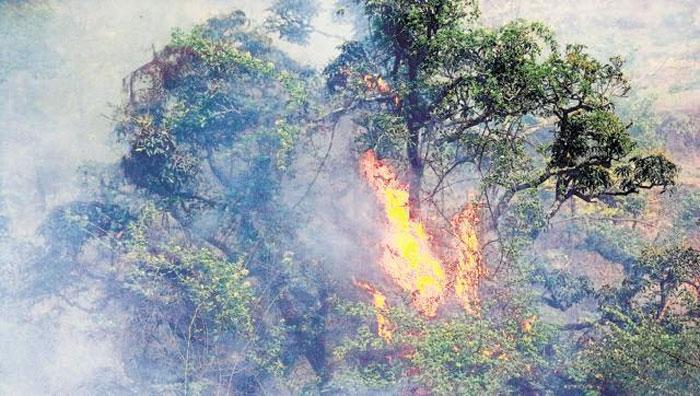Forest fires return to haunt Uttarakhand