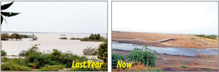 After Guj Govt. Ignores Them, Farmers Are Now Raising Money On Their Own To Save A 144 Year Old Lake!