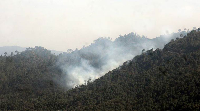 Yet Another Forest Fire Rages In Uttarakhand, And It Is Spreading Fast