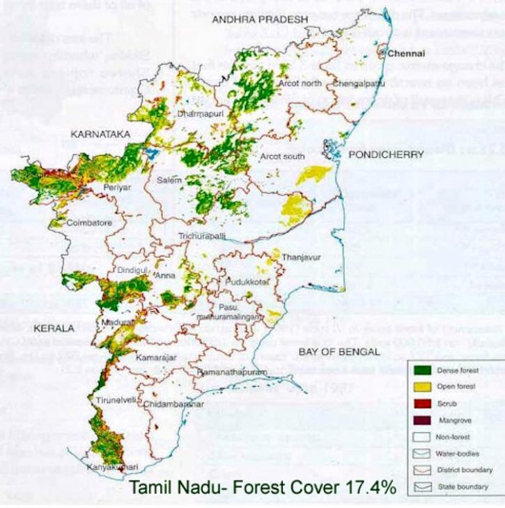 Tamil Nadu forest