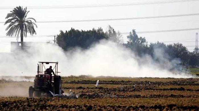 Diwali Is One Cause, NASA Satellite Pics Show Stable Burning In Punjab And Haryana Contributing