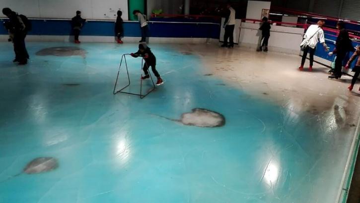 frozen fish skating japan