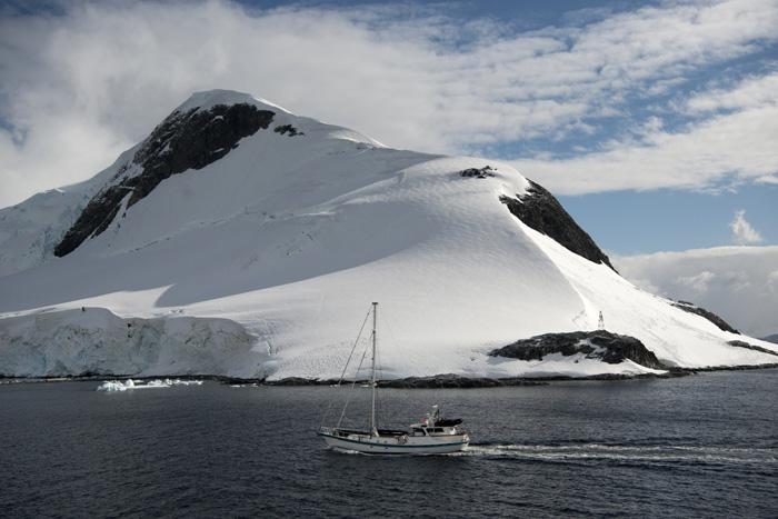 Biggest Marine Reserve In Antarctica